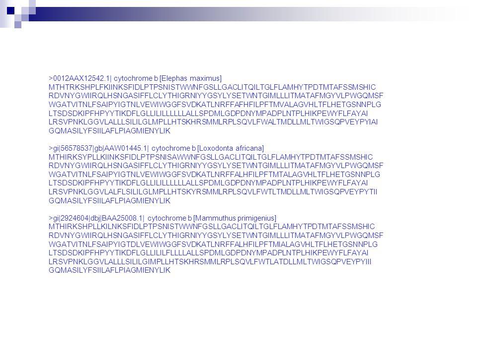 >0012AAX12542.1| cytochrome b [Elephas maximus]
